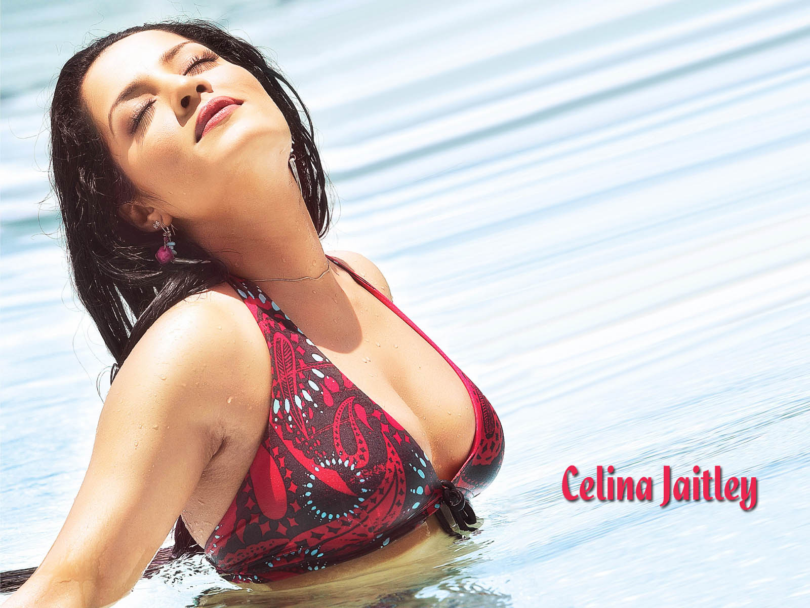 New Wallpapers of Celina Jaitley